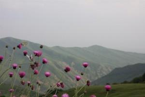 Aserbaidschan - Pass 200km vor Baku